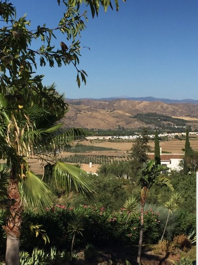 APA225: Country-House for sale in Pizarra