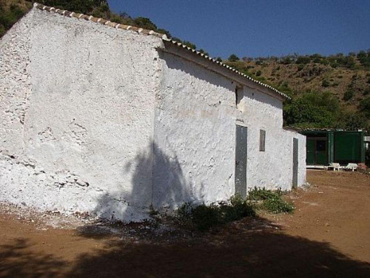 Zalea  Spain