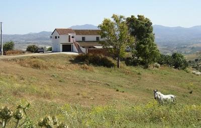 APA102: cortijo for sale in Pizarra